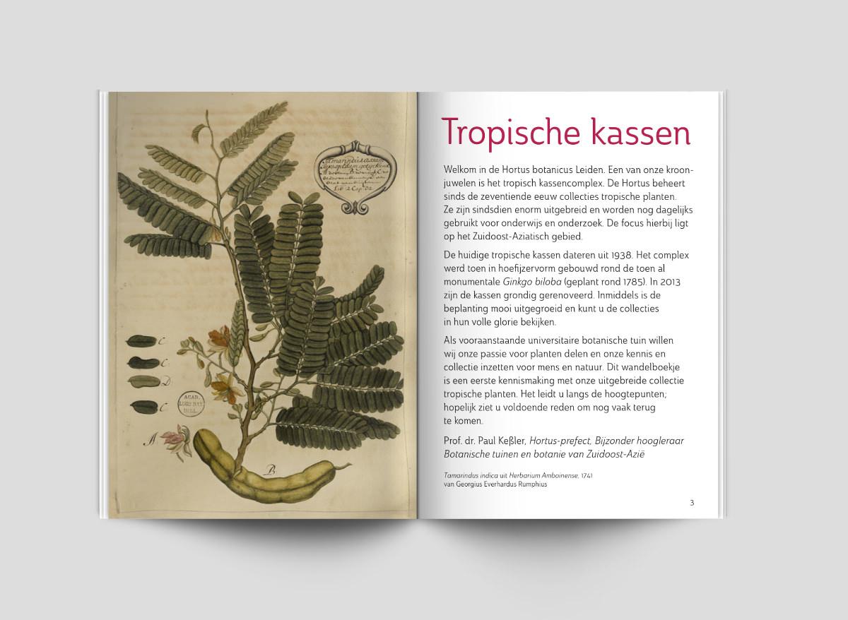 Hortus Leiden online blader magazine Studio Kaboem